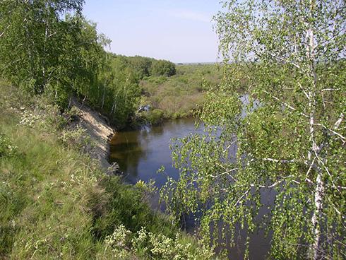 Особо охраняемые природные территории Курганской области: советует библиограф
