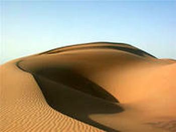 16 июня – День защиты от опустынивания и засухи