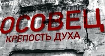 Когда рота бьёт полк: к 100-летию защиты крепости Осовец: советует библиограф